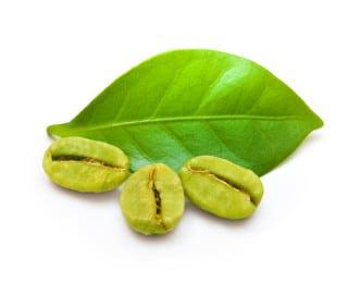 Polvo de café verde 200mg