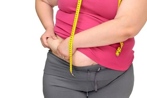 La Epidemia De Obesidad En España